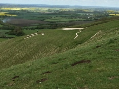 Approaching the White Horse