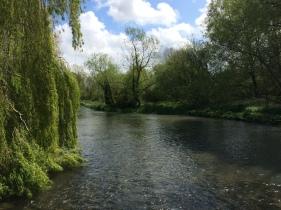 River Kennet in Ramsbury