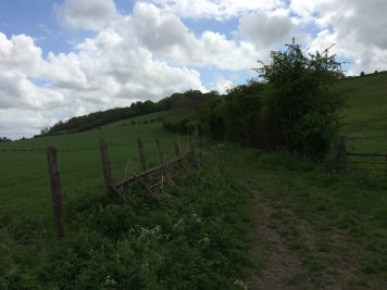 Walking in the country