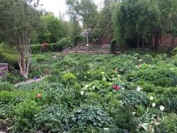 Anne Hathaway garden