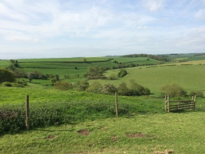 Looking towards the ridge where the Lancastrians beat back the Yorkists before ultimately being defeated.