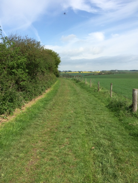 Pathway for touring the battlefield