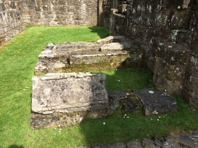 Rievaulx Abbey - Burial yard