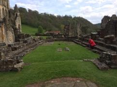 Rievaulx Abbey - Chapter House