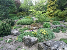 Garden by St Mary's