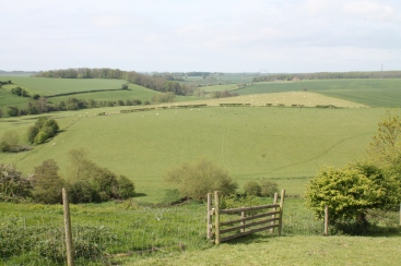 The battlefield today