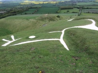 The White Horse (looking at its head)