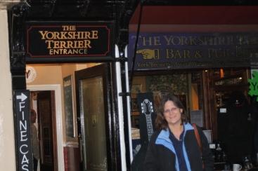 The Yorkshire Terrier (York)