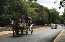 Lakeside street