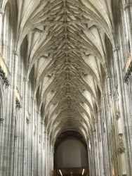 Nave Ceiling in Cathedral