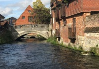 Walk along the River Itchen
